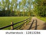 Spring Morning At Deer Lake Park