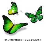 Three Green Butterfly  Isolate...
