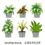 Illustration Of Green Leafy...