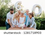 family celebrating a  60th... | Shutterstock . vector #1281718903