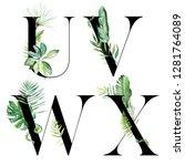 black tropical floral alphabet... | Shutterstock . vector #1281764089