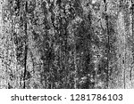 abstract background. monochrome ... | Shutterstock . vector #1281786103