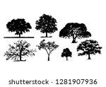 tree silhouettes white... | Shutterstock .eps vector #1281907936