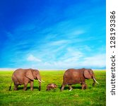 Stock photo elephants family on african savanna safari in amboseli kenya africa 128193386