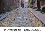 cobble stone alley with dog   Shutterstock . vector #1282302310