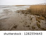 dry land at low tide behind or ... | Shutterstock . vector #1282554643