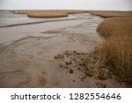 dry land at low tide behind or ... | Shutterstock . vector #1282554646