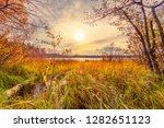 sunset over the forest lake....   Shutterstock . vector #1282651123