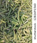 fresh green peas | Shutterstock . vector #1282691560