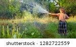 boy hose garden on a summer day. | Shutterstock . vector #1282722559