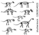 dinosaur skeletons set.... | Shutterstock .eps vector #1282814023