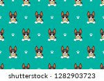 vector cartoon basenji dog... | Shutterstock .eps vector #1282903723