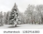 winter park with many snow in...   Shutterstock . vector #1282916383