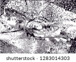 distressed background in black... | Shutterstock . vector #1283014303