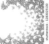 butterflies. flying butterflies....   Shutterstock .eps vector #1283025130