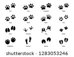 animals footprints  paw prints. ... | Shutterstock .eps vector #1283053246