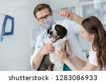 veterinary doctor and girl... | Shutterstock . vector #1283086933