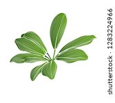 isolated hand drawn green... | Shutterstock .eps vector #1283224966