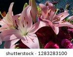 pink flower florist bouquet... | Shutterstock . vector #1283283100