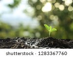farmer's hand watering a young... | Shutterstock . vector #1283367760