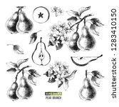 hand drawn black and white set... | Shutterstock .eps vector #1283410150