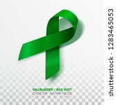 gallbladder and bile duct...   Shutterstock .eps vector #1283465053