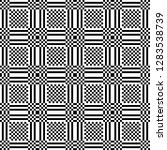 monochrome geometric shapes and ...   Shutterstock .eps vector #1283538739