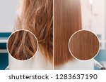 sick  cut and healthy hair care ... | Shutterstock . vector #1283637190