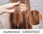 texture of damaged female hair... | Shutterstock . vector #1283637223