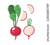 whole  half and sliced garden... | Shutterstock .eps vector #1283680789