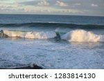 waves in a ocean swim to shore   Shutterstock . vector #1283814130