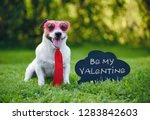 valentines card greeting with... | Shutterstock . vector #1283842603
