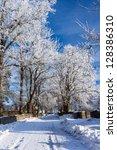 Winter road running between the frozen trees under snow - stock photo