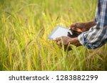farmer using digital tablet... | Shutterstock . vector #1283882299