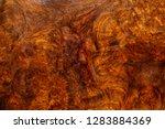 nature afzelia burl wood... | Shutterstock . vector #1283884369