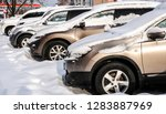 Cars Stand In The Snow