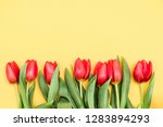 flat lay of red tulips... | Shutterstock . vector #1283894293