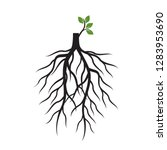 tree roots and germinate limb.... | Shutterstock .eps vector #1283953690