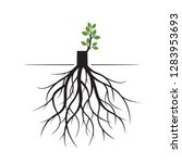 tree roots and germinate limb.... | Shutterstock .eps vector #1283953693