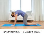 fitness  yoga and healthy... | Shutterstock . vector #1283954533