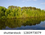 Mississippi, Tennessee-Tombigbee Waterway. Early evening reflection along the Tenn-Tom Waterway.