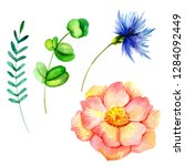 set of watercolor flowers and... | Shutterstock . vector #1284092449