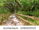 dirt pathway through southern... | Shutterstock . vector #1284322519