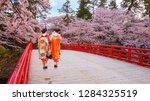 japanese geisha with full bloom ... | Shutterstock . vector #1284325519