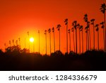 palm trees against beautiful... | Shutterstock . vector #1284336679