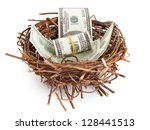 Dollar Bills In A Birds Nest...