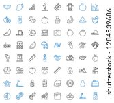 diet icons set. collection of... | Shutterstock .eps vector #1284539686