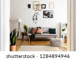posters above grey sofa with... | Shutterstock . vector #1284894946