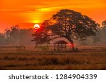 hut in the rice field and... | Shutterstock . vector #1284904339
