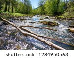 ostravice river spring as very... | Shutterstock . vector #1284950563